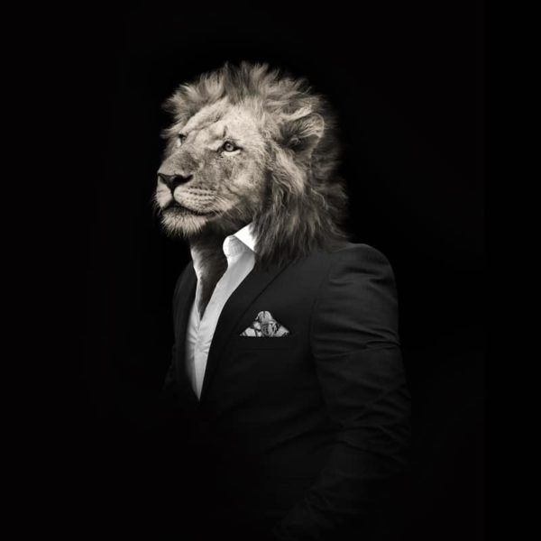 pochette costume noir et blanc tigre lion