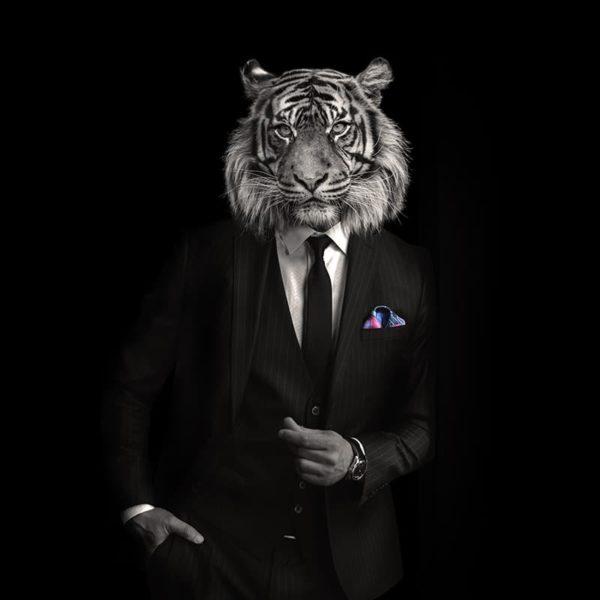 packshot2 pochette costume homme made in France maison fétiche lion la danse n2 pink poisson perroquet