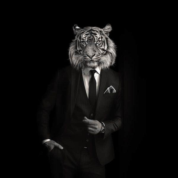 packshot2 pochette costume homme made in France maison fétiche tigre profonseur forets jungle noir et blanc
