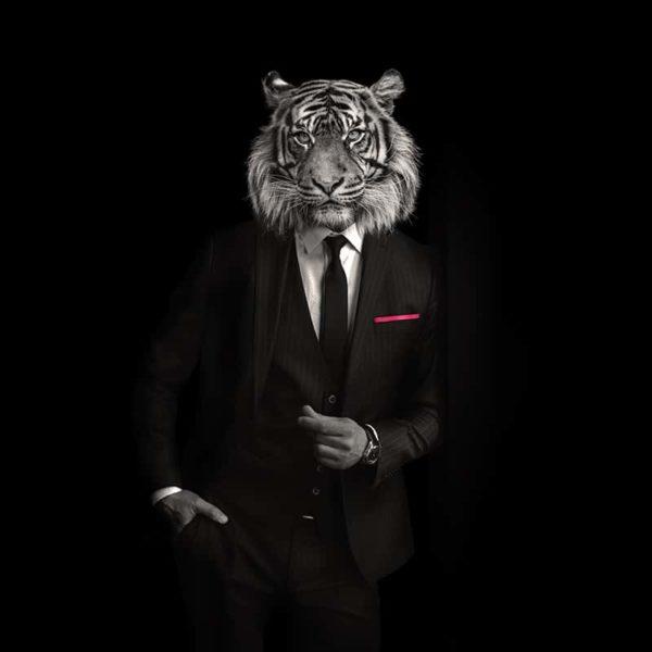packshot5 pochette costume homme made in France maison fétiche lion la danse n2 pink poisson perroquet