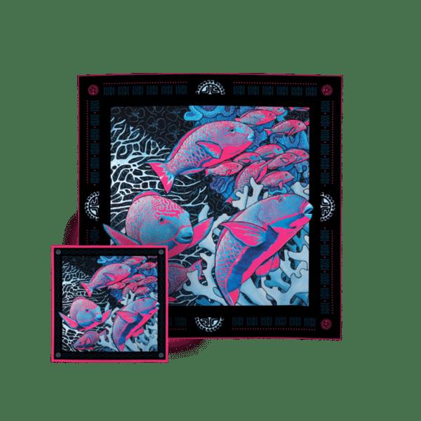 packshot2 coffret duo foulard pochette la danse n2 pink poisson perroquet gorgone corail