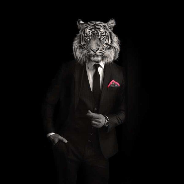 packshot6 pochette costume homme made in France maison fétiche lion la danse n2 pink poisson perroquet